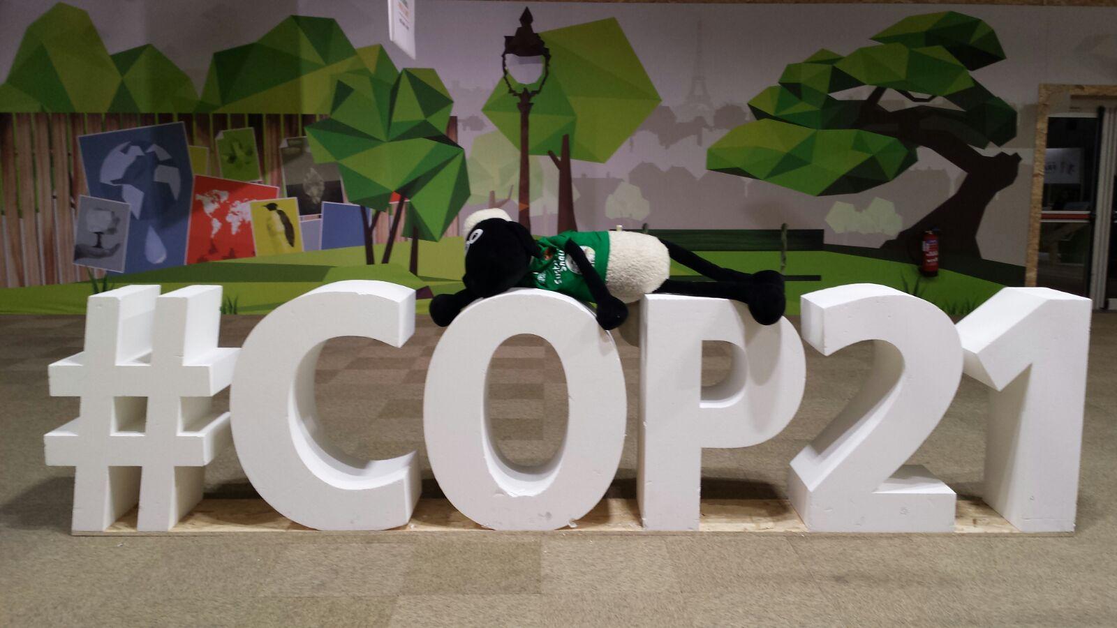 Focal Point at COP21 Paris